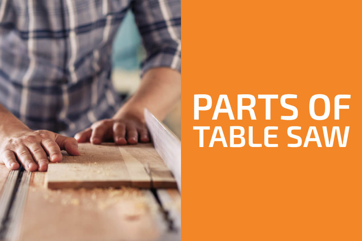 Table Saw Parts and Their Functions