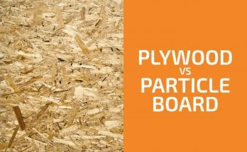 Plywood vs. Particle Board: Which Should You Use?