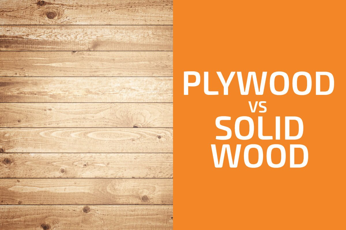 Plywood vs. Solid Wood: Which Should You Use?