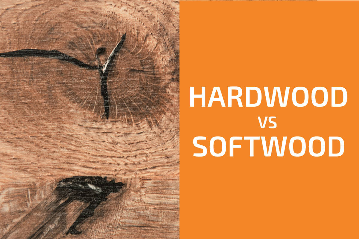 Hardwood vs. Softwood: Which to Use?