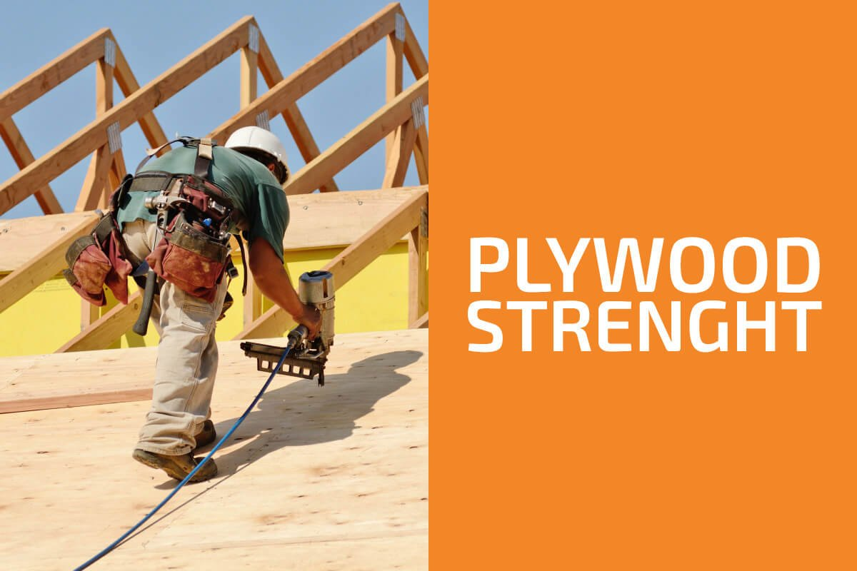 How Much Weight Can Plywood Support?